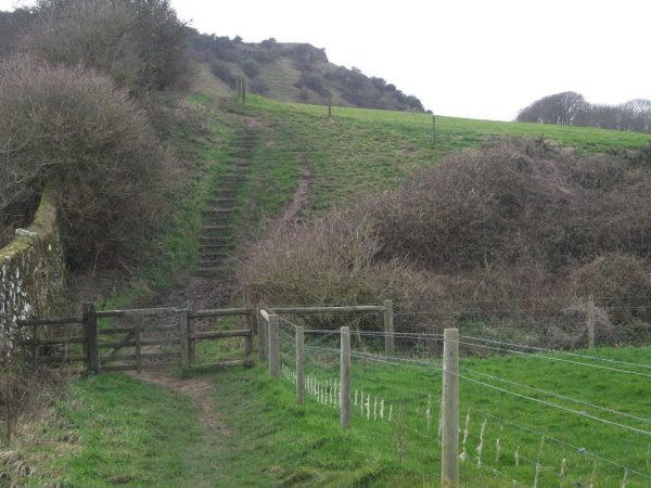 Godshill Walk