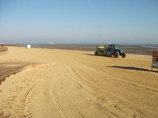 Sandy Appley Beach Cleaning