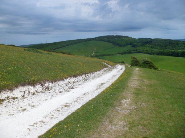 Tennyson Trail Walk
